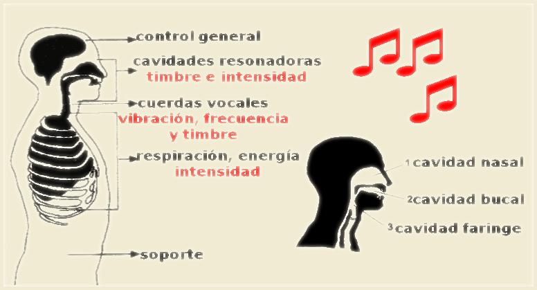 Los 6 sonidos
